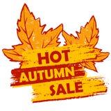 Gorąca jesieni sprzedaż z liści, pomarańczowej i brown rysującą etykietką, Obraz Royalty Free