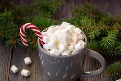 Gorąca kawowa czekolada z marshmallow na nieociosanym drewnianym stołowym tle, cukierek trzcin prezenta pudełek jedlinowy drzewo Zdjęcia Stock