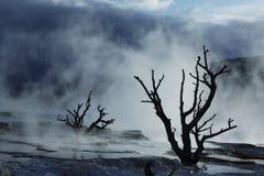 gorąca mamutowa wiosna Yellowstone zdjęcia royalty free