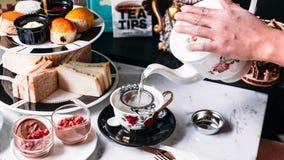 Gorąca Motyliego grochu czarnej jagody herbata słuzyć nalewać od kubka przez stal nierdzewna durszlaka herbacianego infuser w por obraz stock