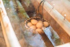 Gorąca naturalna podziemna termiczna woda używa gotować się kurczaków jajka w niektóre powulkanicznej aktywności terenie Zdjęcie Stock