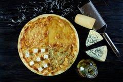 Gorąca sosowana wyśmienicie Włoska pizza zdjęcie royalty free