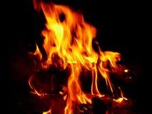 gorące Zdjęcia Stock
