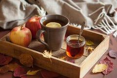 Gorącego cytryny nagrzania napoju miodowego herbacianego szalika jesieni wygodni liście zdjęcia royalty free