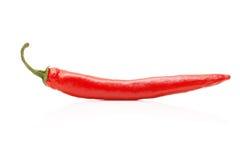 gorącego pieprzu czerwień Fotografia Royalty Free
