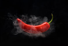 gorącego pieprzu czerwień Fotografia Stock