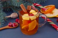 Gorącej zimy Owocowa herbata w Szklanej filiżanki, Cynamonowego kija, pomarańcze, Tangerine i jodły gałąź, obraz stock