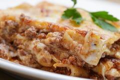 Gorący świeżo robić domowy lasagna fotografia royalty free