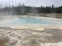 Gorący baseny Yellowstone park narodowy z kontrparą Fotografia Royalty Free