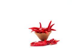 Gorący chili na białym tle Zdjęcie Royalty Free