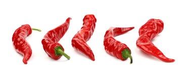 Gorący chili pieprze zamykają w górę odosobnionego na bielu Zdjęcia Royalty Free