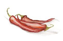 Gorący chili pieprzy farby odizolowywać ilustracja wektor