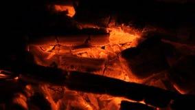 Gorący embers dla piec mięso zdjęcie wideo