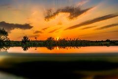 Gorący i ciepli kolory i cienie piękni krajobrazy Rosja w Rostov regionie Lokalni pola kwitnący żółci słoneczniki, zdjęcie royalty free