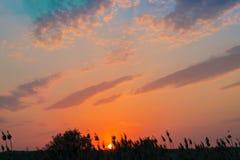 Gorący i ciepli kolory i cienie piękni krajobrazy Rosja w Rostov regionie Lokalni pola kwitnący żółci słoneczniki, fotografia royalty free