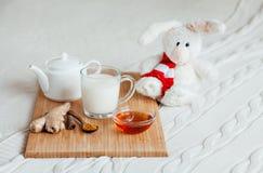 Gorący mleko w szklanym miodzie na drewnianej desce i filiżance Traktowanie dziecko napój lud remedia w łóżku miękka zabawka Obraz Stock