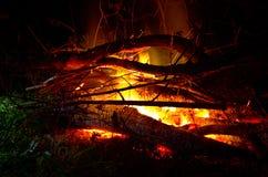 Gorący ogień przy nocą Zdjęcia Royalty Free