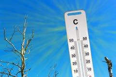 Gorący suchy lato globalne ocieplenie Termometr i suszy krajobraz Pojęcie nagrzanie Fotografia Royalty Free