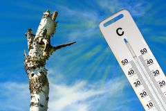 Gorący suchy lato globalne ocieplenie Termometr i suszy krajobraz Pojęcie nagrzanie Obrazy Royalty Free