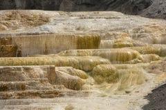 Gorący, węglanu rockowy nazwany trawertyn tworzy tarasy w Yellowst fotografia stock