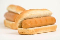 gorący wyśmienicie psi fast food Zdjęcie Royalty Free