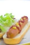 gorący wyśmienicie psi fast food Obrazy Royalty Free