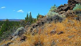 Gorący wysokości pustyni dzień Obraz Stock