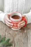 Gorący zima napój w rękach Zdjęcie Stock