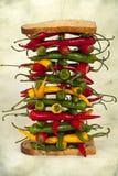 Gorąca chili pieprzu kanapka Zdjęcie Royalty Free