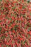 gorąca chilipepper czerwone. Obraz Stock