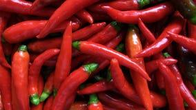 gorąca chillies czerwone. Obrazy Royalty Free