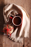 gorąca czekolada Obraz Stock
