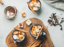 Gorąca czekolada w emalia kubkach z cynamonem i piec marshmallows Obrazy Royalty Free