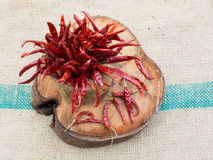 gorąca czerwone chili Fotografia Royalty Free