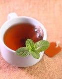 Gorąca herbata Fotografia Stock