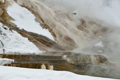 gorąca mamuta np wiosna zima Yellowstone Zdjęcia Stock
