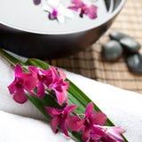 gorąca orchidei kamieni terapia Obraz Stock