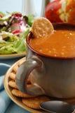 gorąca zupa Zdjęcie Stock