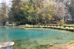 Gorące wiosny w Chiang Raja, Tajlandia Zdjęcie Stock