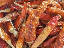 Gorącego chili pieprzu warzywa karmowi Obraz Stock
