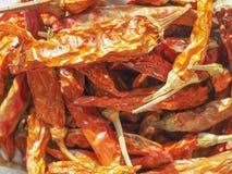 Gorącego chili pieprzu warzywa karmowi Zdjęcia Royalty Free