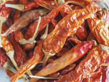 Gorącego chili pieprzu warzywa karmowi Zdjęcie Royalty Free