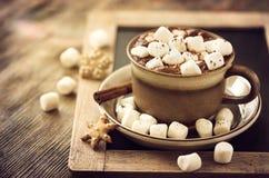 Gorący cacao napój z marshmallows Zdjęcie Stock