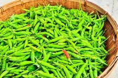 Gorący chili. Fotografia Stock
