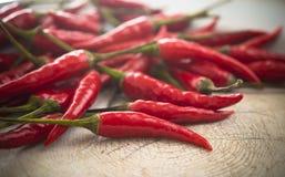 Gorący chili pieprz Obraz Royalty Free