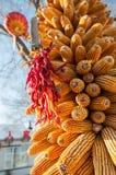 Gorący pieprz i kukurydza Obraz Stock