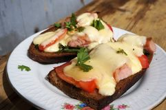 Gor?cy ser, pomidory i kie?bas kanapki na ?yto chlebie, zdjęcie royalty free