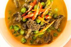 Gorący Tajlandzki curry Obraz Stock