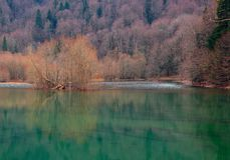 Gora di Biogradska Fotografia Stock