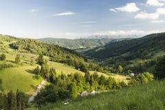 Gorce berg Arkivfoto
